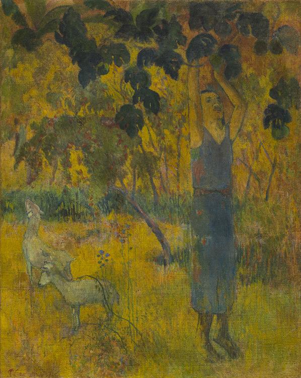 Paul Gauguin - 064 L'homme cueillant des fruits - Мужчина, собирающий плоды с дерева - 1897 - 92,5x73,3 - Acheté chez Vollard, 4 mai 1906 + 055 + 2 Cézanne, 30 000f - cat. 1913, 30 - inv. Ermitage 9118